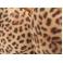 Supadance 1073 Leopard